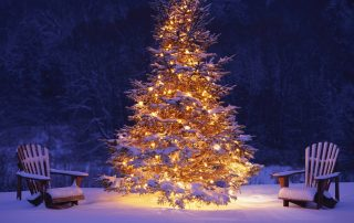 christmas-tree-lights-cool-model-15-inspiration-ideas